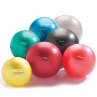 Patterson Medical Anti Burst Exercise Therapy Balls