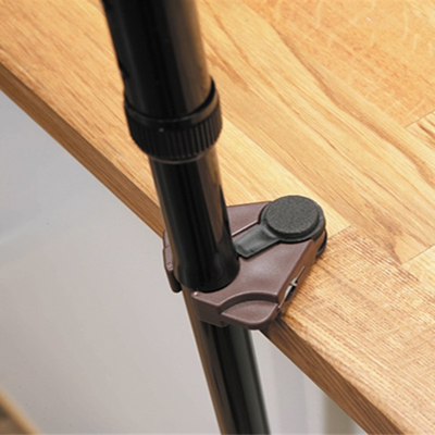 cane holder with walking stick
